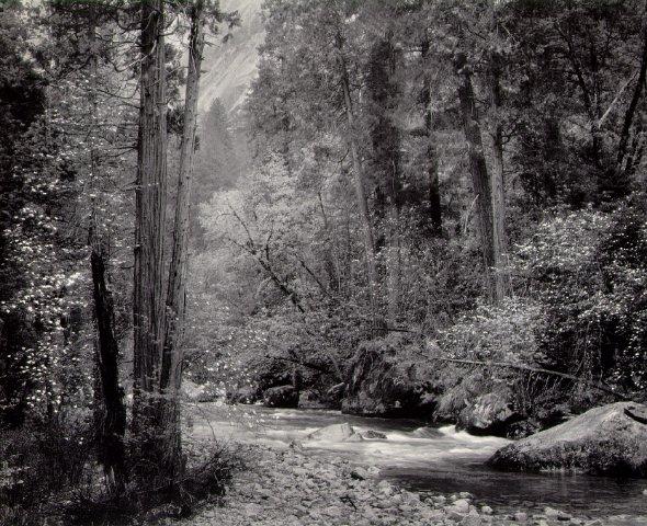 Ansel Adams 1948