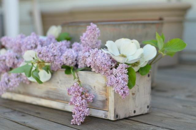 Lilacs-FlowerPatchFarmhouse.com-1-of-34