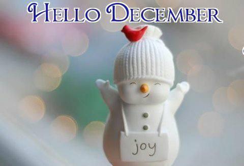 hello-december-1