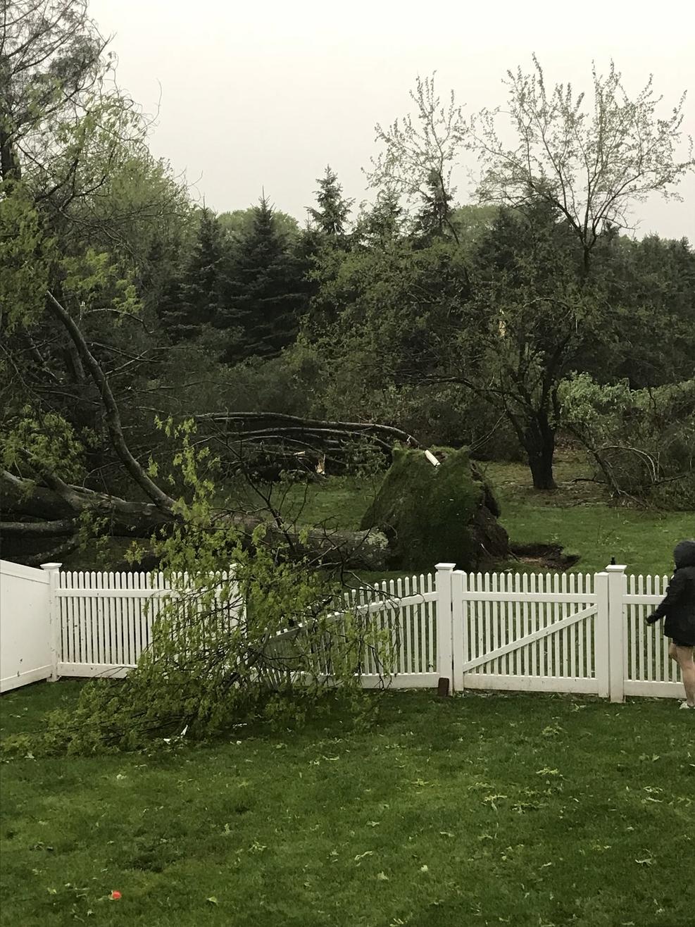 Tornado WALLINGFORD