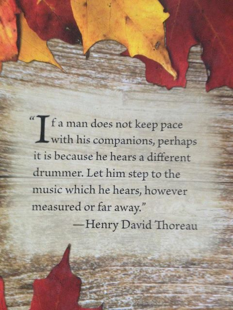 Thoreau quote 2